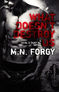 What Doesn't Destroy Us (The Devil's Dust) (Volume 1)
