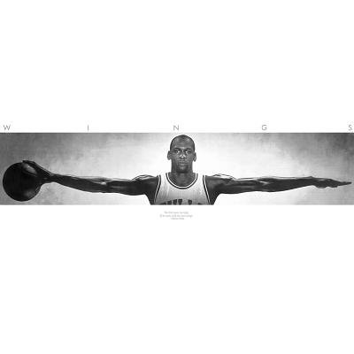(72x23) Michael Jordan (Wings Door) Sports Poster Print