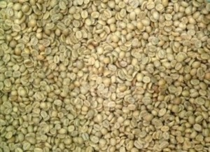 5LBS Ethiopia Lekempte Unroasted Green Coffee Beans