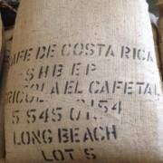 15LBS Costa Rica Tarrazu Unroasted Green Coffee Beans