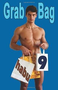 Grab Bag 9 (Grab Bag Gay Erotica Anthologies) (Volume 9)