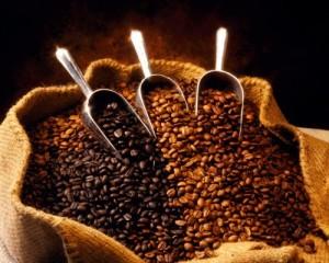 Burundi A Nyarunazi Bourbon Unroasted Coffee Beans