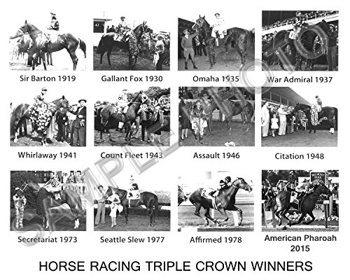 American Pharoah Secretariat Affirmed Horse Triple Crown Winners 8X10 PHOTO