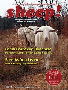 Sheep Magazine