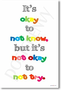 It's Okay to Not Know but It's Not Okay to Not Try - NEW Classroom Motivational Poster