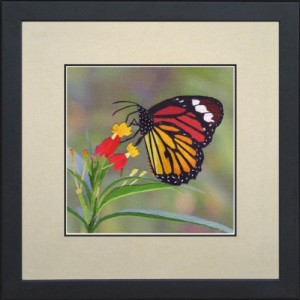 King Silk Art 100% Handmade Embroidery Mixed Group Monarch Butterfly on a Fuchsia Master Large Framed Wildlife Butterfly Painting Gift Oriental Asian Wall Art Décor Artwork Tapestry Hanging Picture Gallery 33016WFG