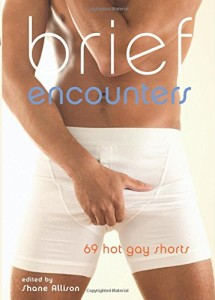 Brief Encounters: 69 Hot Gay Shorts
